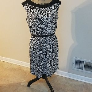 LOFT size medium dress nwt